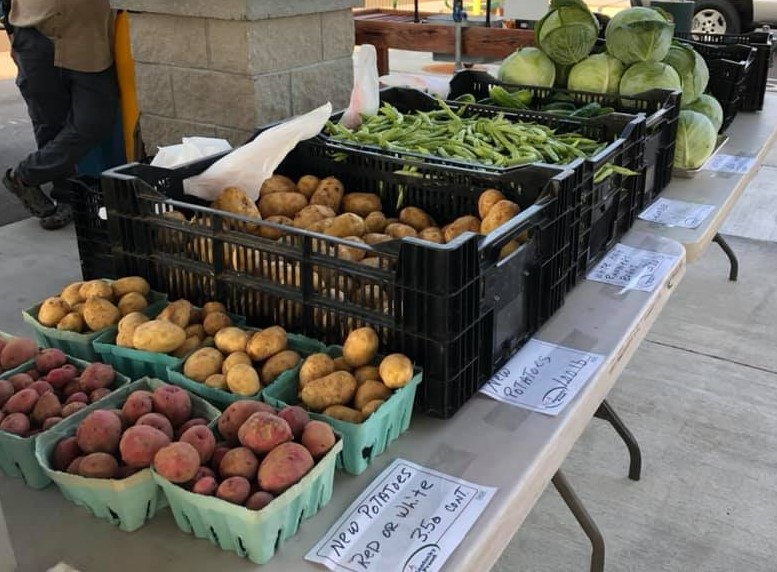 Tables with potatoes, green beans and cabbage for sale.
